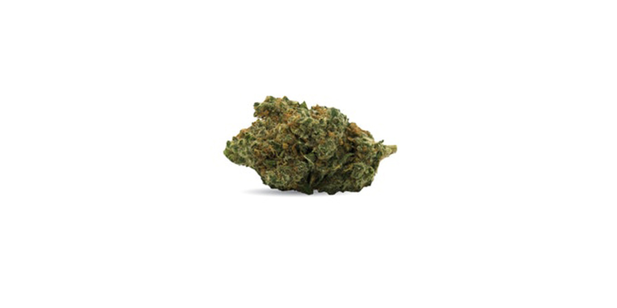 cherry-bomb-weed strain for sale in scarborough-stokd cannabis retail store