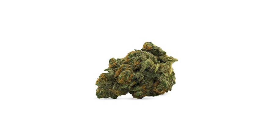 ghost-haze-weed strain for sale at legal weed dispensary in scarborough