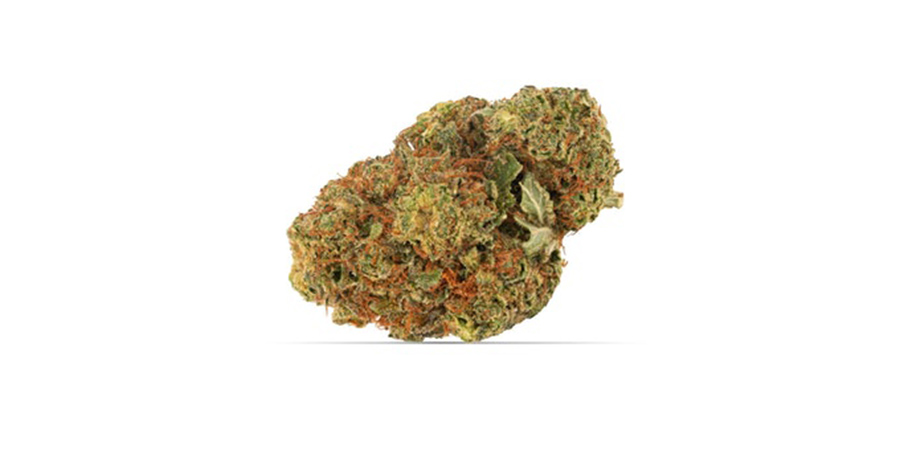 grandaddy-purple weed strains for sale in toronto weed dispensary stokd cannabis in scarborough. Stok'd Cannabis Retail Store 631 Pharmacy Avenue Scarbourgh, ON M1L 3H3 (416) 580-3302