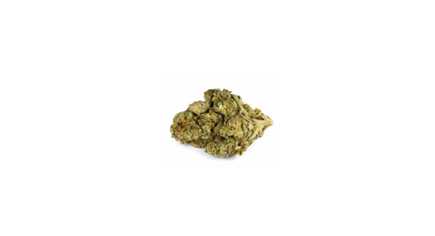 Grapevine GG1 sativa weed strain for sale online in scarborough. Stok'd Cannabis Retail Store 2408 Kingston Rd Scarborough, ON M1N 1V2. (416) 580-3302