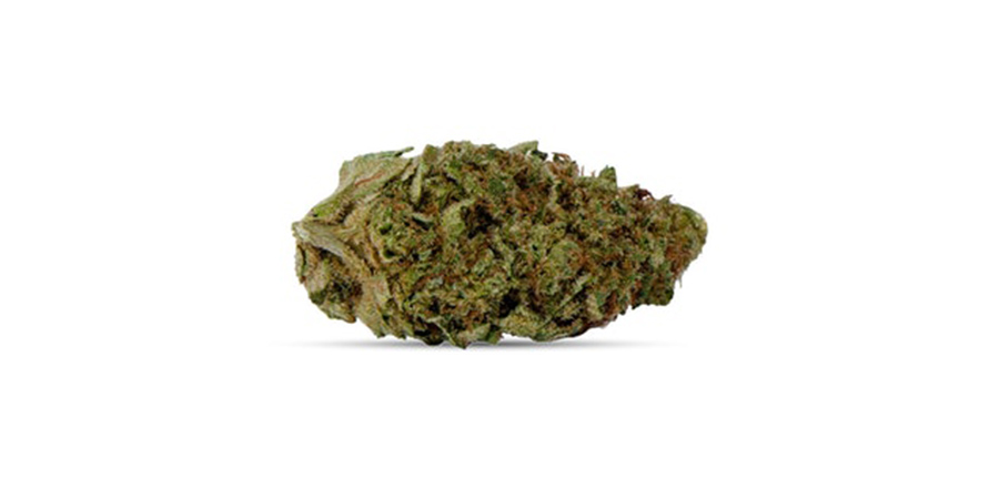 jack-haze-weed strains for sale in cannabis dispensary scarborough. Stok'd Cannabis Retail Store 631 Pharmacy Avenue Scarbourgh, ON M1L 3H3 (416) 580-3302