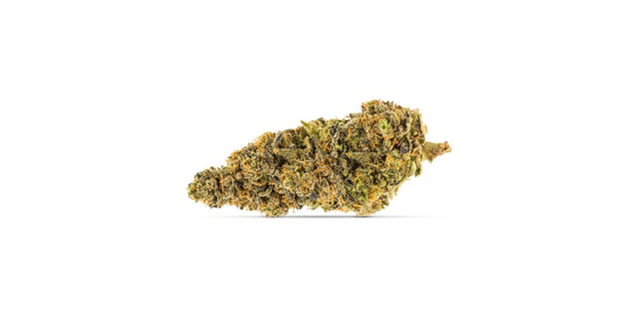peggys-pride-weed strains for sale at weed shop store in toronto east scarborough. Stok'd Cannabis Retail Store 631 Pharmacy Avenue Scarbourgh, ON M1L 3H3 (416) 580-3302.