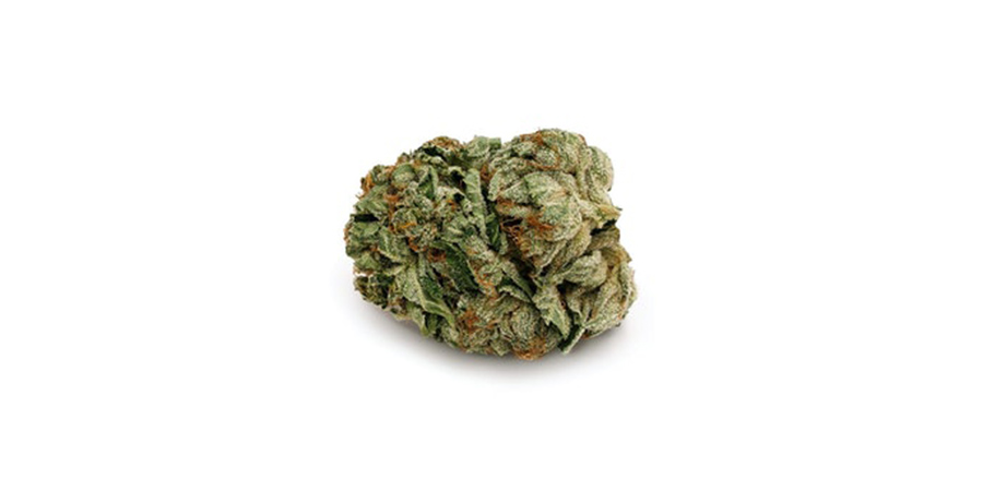 BC pink-kush weed strain for sale at stokd cannabis retail store in scarborough. Stok'd Cannabis Retail Store 631 Pharmacy Avenue Scarbourgh, ON M1L 3H3 (416) 580-3302.