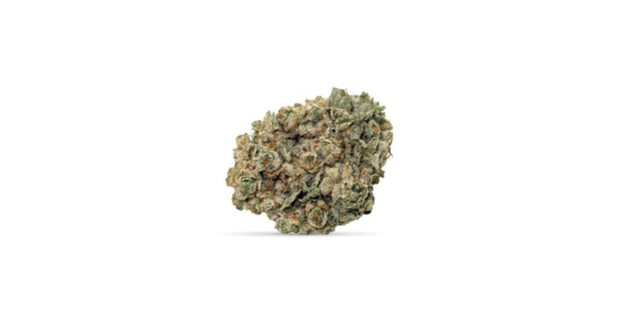 sunset sherbet weed strains for sale at dispensary in scarborough toronto. Stok'd Cannabis Retail Store 631 Pharmacy Avenue Scarbourgh, ON M1L 3H3 (416) 580-3302.