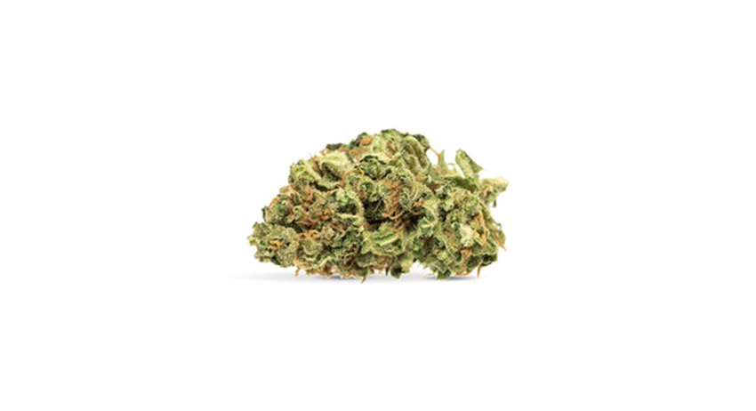 order Tangerine Dream sativa weed from legal weed store in scarborough